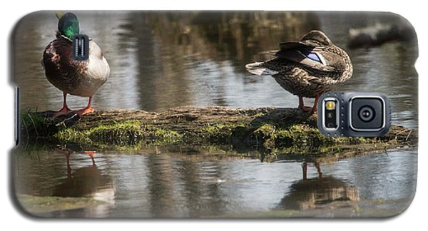 Galaxy S5 Case featuring the photograph Preening Ducks by David Bearden