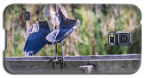 Galaxy S5 Case featuring the photograph Preening Gret Blue Heron by Edward Peterson