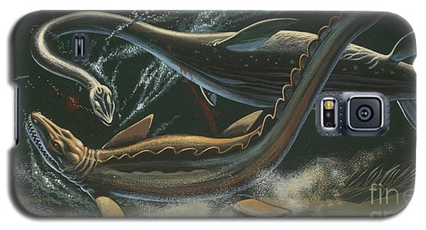 Prehistoric Marine Animals, Underwater View Galaxy S5 Case by American School
