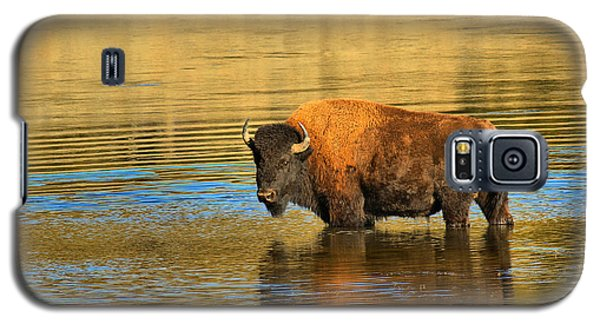 Galaxy S5 Case featuring the photograph Preparing To Swim The Yellowstone by Adam Jewell