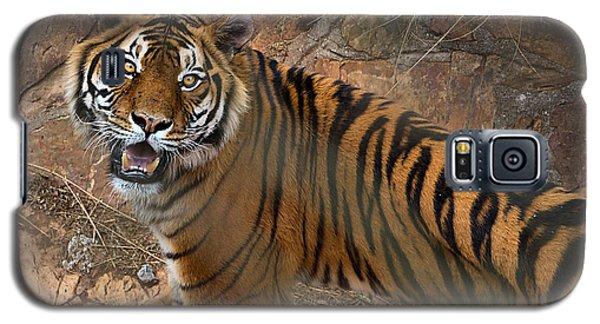Pretoria Zoo Galaxy S5 Case by Steven Richman