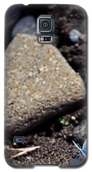Pretty Butterfly Galaxy S5 Case by Cherie Duran