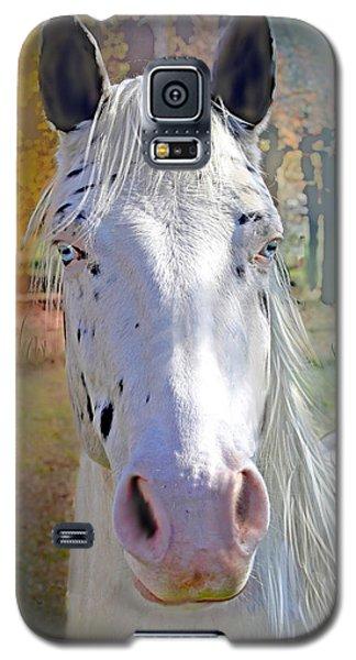 Pretty Eyes Galaxy S5 Case by Bonnie Willis