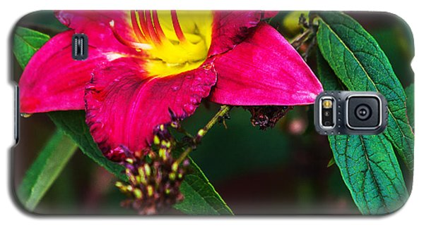 Galaxy S5 Case featuring the photograph Pretty Flower by Edward Peterson