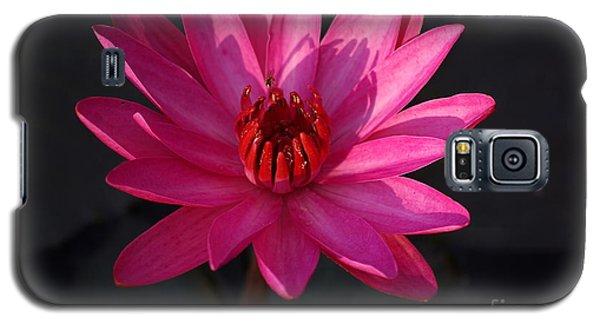 Pretty In Pink Galaxy S5 Case by John S