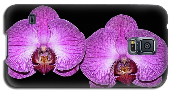 Pretty In Pink Phalaenopsis Orchids Galaxy S5 Case