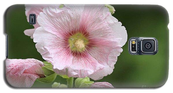 Pretty In Pink Galaxy S5 Case
