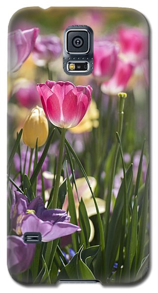 Pretty In Pink Tulips Galaxy S5 Case