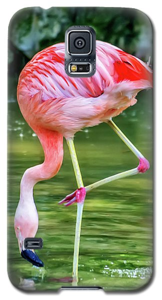 Pretty Pink Flamingo Galaxy S5 Case