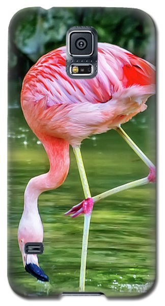 Pretty Pink Flamingo Galaxy S5 Case