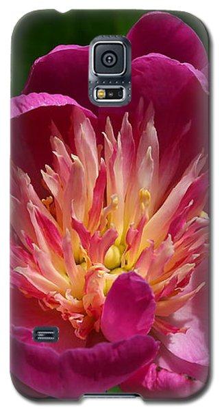 Pretty Pink Peony Flower Galaxy S5 Case