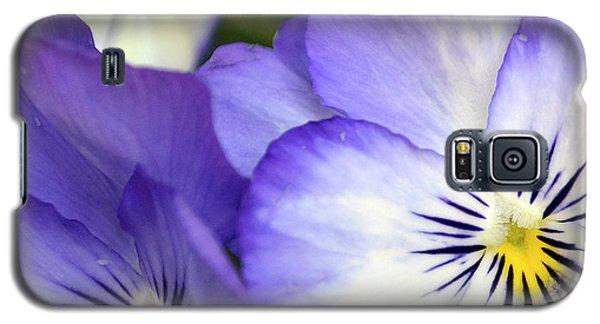Galaxy S5 Case featuring the photograph Pretty Violas by Ann Bridges