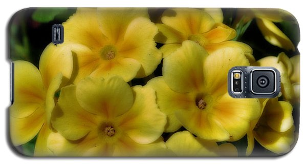 Galaxy S5 Case featuring the photograph Pretty Yellow Primrose by Smilin Eyes  Treasures