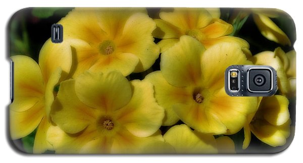 Pretty Yellow Primrose Galaxy S5 Case by Smilin Eyes  Treasures