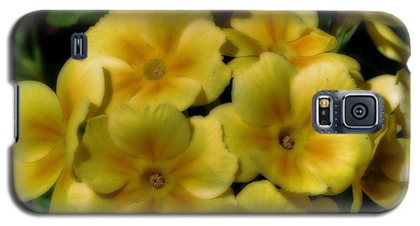 Pretty Yellow Primrose Galaxy S5 Case