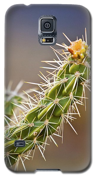 Prickly Branch Galaxy S5 Case
