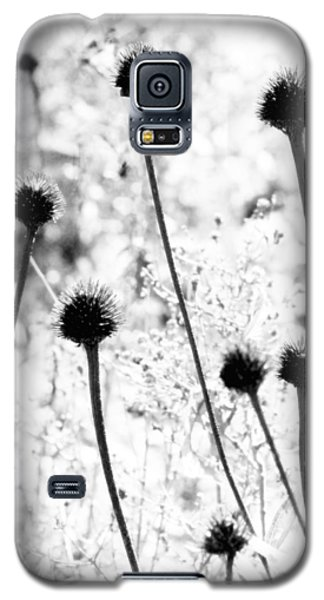 Galaxy S5 Case featuring the photograph Prickly Buds by Deborah  Crew-Johnson