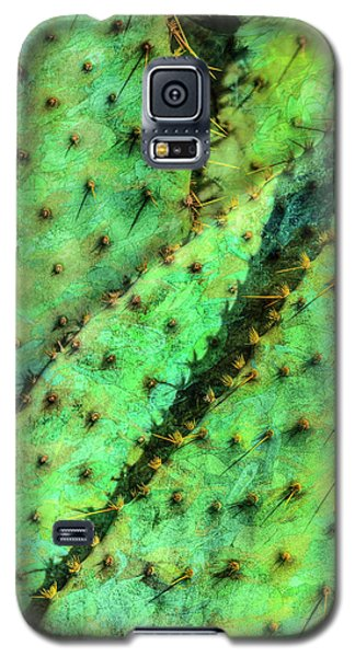 Galaxy S5 Case featuring the photograph Prickly by Paul Wear