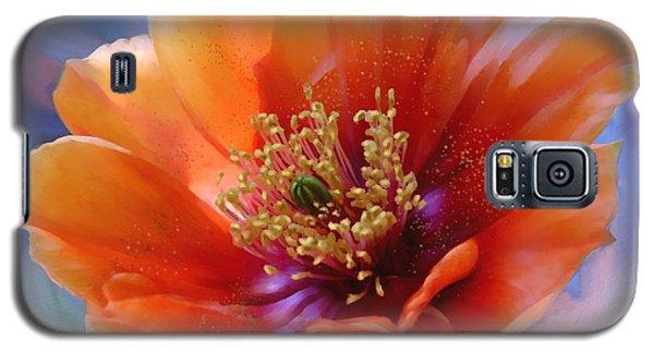 Prickly Pear Bloom Galaxy S5 Case by Judy Filarecki