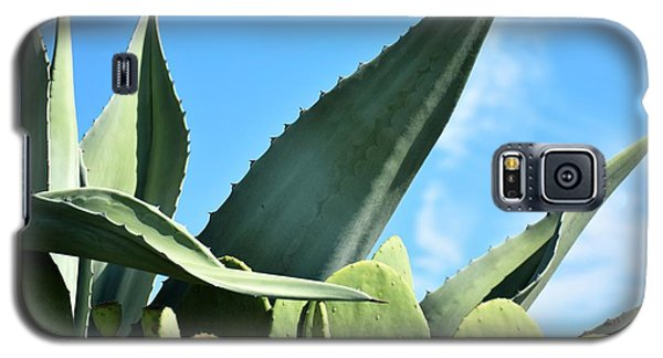 Galaxy S5 Case featuring the photograph Prickly Pear Cactus And Century Plant by Ray Shrewsberry