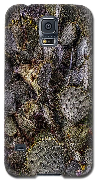 Prickly Pear Cactus At Tonto National Monument Galaxy S5 Case