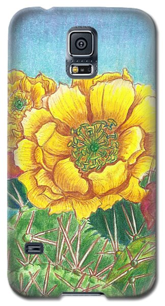 Galaxy S5 Case featuring the drawing Prickly Pear Cactus Flowering by Dawn Senior-Trask
