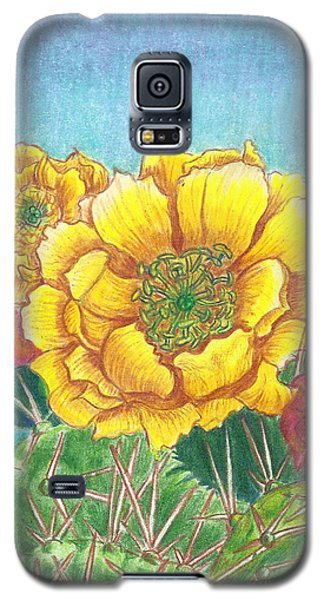 Prickly Pear Cactus Flowering Galaxy S5 Case by Dawn Senior-Trask