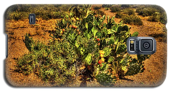 Prickly Pear In Bloom With Brittlebush And Cholla For Company Galaxy S5 Case