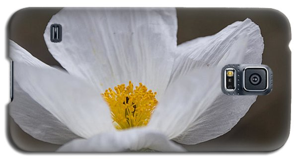 Prickly Poppy Galaxy S5 Case