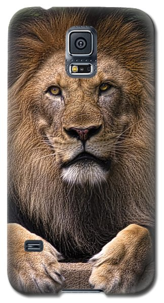 Pride Galaxy S5 Case