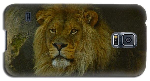 Pride Land Galaxy S5 Case by Laddie Halupa