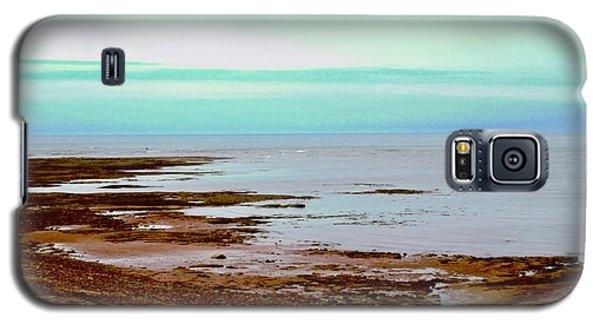 Prim Point Beach Galaxy S5 Case