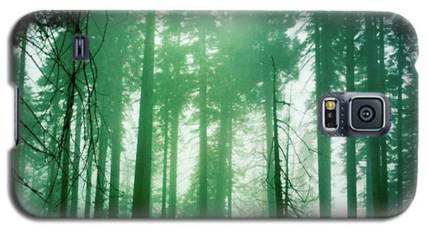 Primeval Forest Galaxy S5 Case