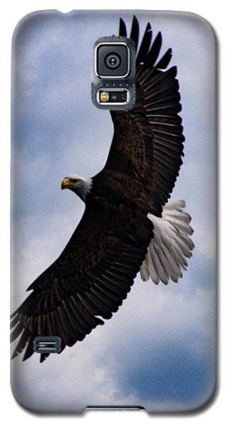 Prince Rupert Soaring Eagle Galaxy S5 Case