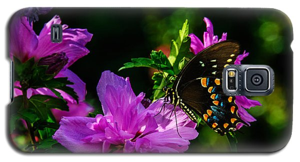 Private Dancer Galaxy S5 Case
