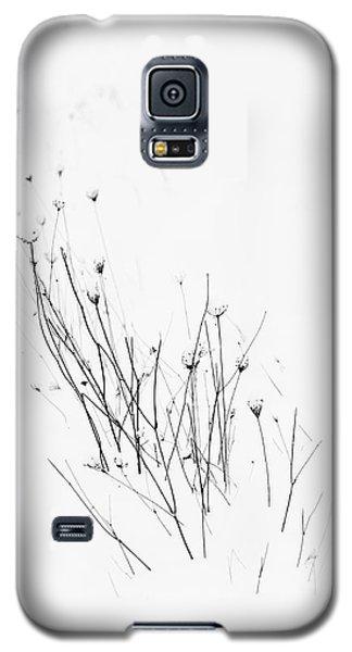 Procession Galaxy S5 Case