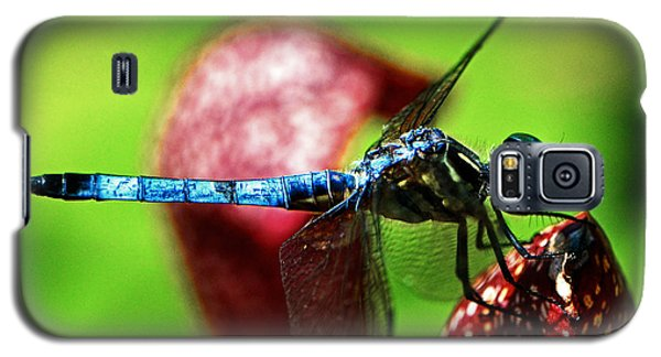 Galaxy S5 Case featuring the photograph Profile Of A Dragonfly 003 by George Bostian