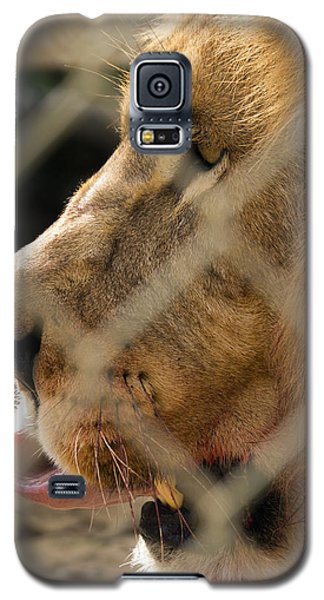 Profile Of A King Galaxy S5 Case