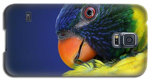 Profile Of A Lorikeet Galaxy S5 Case