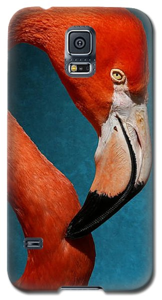 Profile Of An American Flamingo Galaxy S5 Case