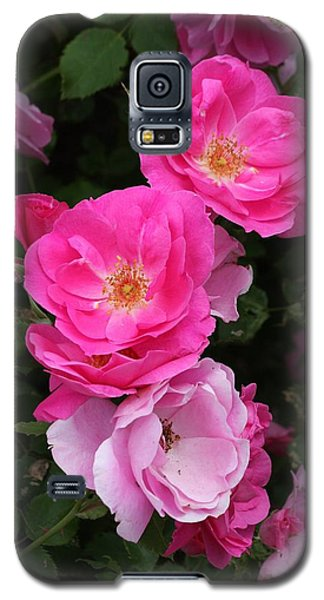 Galaxy S5 Case featuring the photograph Profusion Of Pink by Doris Potter
