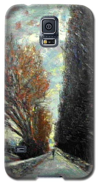 Galaxy S5 Case featuring the painting Promenade by Walter Casaravilla