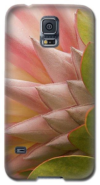 Protea Blossom Galaxy S5 Case