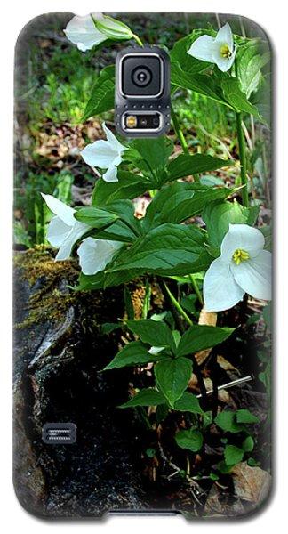 Galaxy S5 Case featuring the photograph Protected Wild Trillium  by LeeAnn McLaneGoetz McLaneGoetzStudioLLCcom