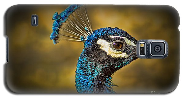 Proud As A Peacock Galaxy S5 Case by Steven Parker