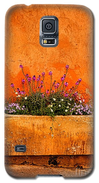 Galaxy S5 Case featuring the photograph Provencal Melody by Olivier Le Queinec