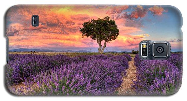 Provence Galaxy S5 Case