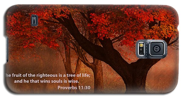 Galaxy S5 Case featuring the photograph Proverbs 11 30 Scripture And Picture by Ken Smith