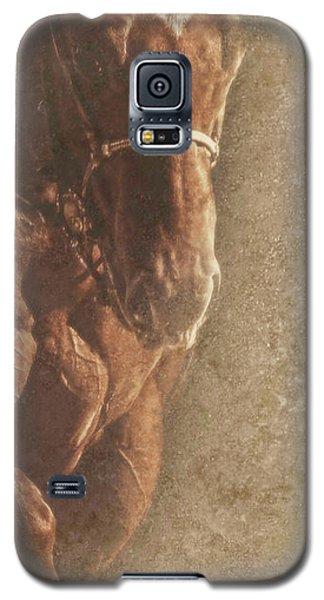 Prowess And Power Galaxy S5 Case