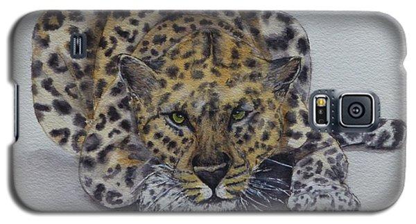 Prowling Leopard Galaxy S5 Case